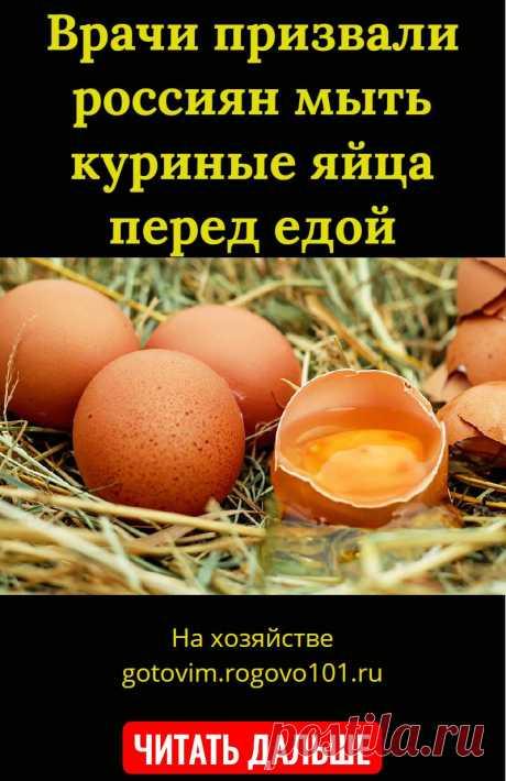 Врачи призвали россиян мыть куриные яйца перед едой