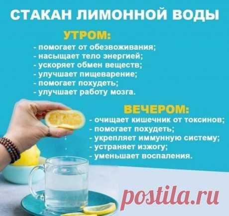 В чем волшебство стакана лимонной воды