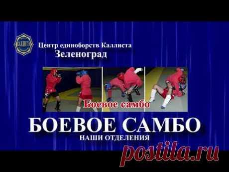 Зеленоград спорт с 3 до 60 лет.Центр единоборств Каллиста.https://2015kallista.com/