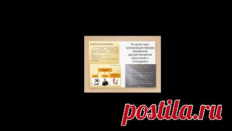В какой срок организация вправе применить дисциплинарное взыскание к сотруднику | Жизнь и кошелек | Яндекс Дзен