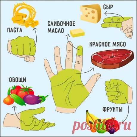 Сколько еды нужно съедать за раз | Не обязательно садиться на жесткую диету и есть одни брокколи, — достаточно просто ограничить себя в количестве еды.  5 принципов «ручной» диеты  1. Пригоршня из двух сложенных ладоней — это то количество овощей, которое нужно съесть за день.  2. Передняя часть кулака — дневная норма углеводов (рис, другие каши, макаронные изделия, хлеб).  3. Открытая ладонь без учета пальцев показывает, какой кусок мяса нужно съедать в день.  4. Сжатый кулак по объему