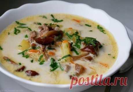Как приготовить сырный суп с опятами и куриным фаршем - рецепт, ингредиенты и фотографии