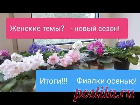 Что делать с Фиалками осенью? Итоги! ЖЕНСКИЕ ТЕМЫ - Новый канал!