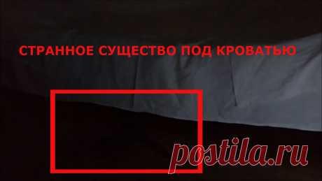 Призрак попал в кадр видео под кроватью? Странное и загадочное существо снятое ночью на камеру слежения. Это история произошла в Москве ночью 4 сентября 2019 года. На видеорегистратор в кадр попал странное существо черного цвета с длинными руками оно выползало под кровати. Что это было непонятно может это был призрак. Хозяин боится спать в этой комнате хочет уехать подальше оттуда. Есть слухи в этом комнате повесился один алкоголик, может он от страха сума начал сходить