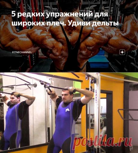 5 редких упражнений для широких плеч. Удиви дельты | fitnechannel | Яндекс Дзен