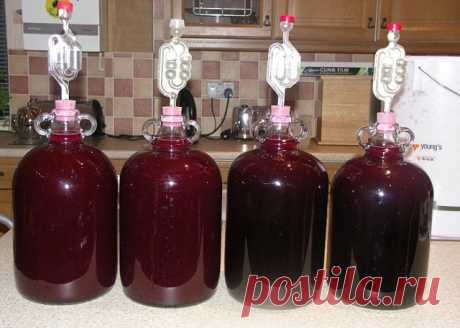 ВКУСНОЕ Домашнее сливовое ВИНО по  рецепту от известного винодела ! Делюсь с вами подробным фото рецептом .Сохраняйте Для классического рецепта вина из сливы нужно взять:  10кг сливы, 2 кг сахара,  50 г дрожжей. Способ приготовления.   Сливы промываем, удаляем косточки, заливаем небольшим количеством воды и провариваем до мягкости.