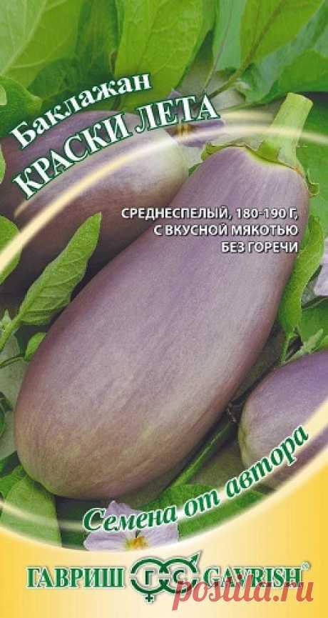 """Баклажан """"Краски лета"""""""