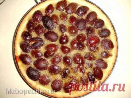 Сливовый тарт с кремом (пиццамейкер Princess 115000) - Хлебопечка.ру