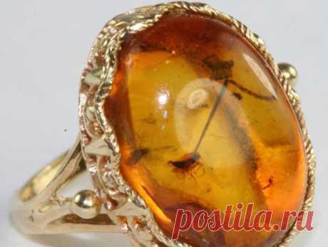 Невероятно красивые украшения из янтаря / Все для женщины
