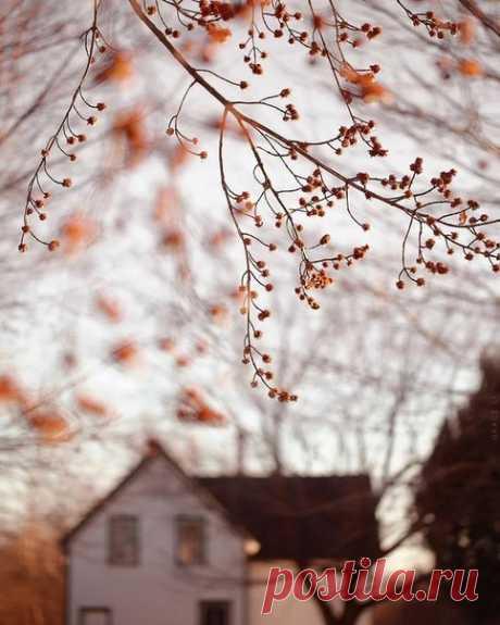 Вечная осень/Хэллоуин