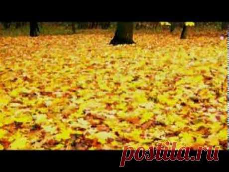 Восток - Танец желтых листьев