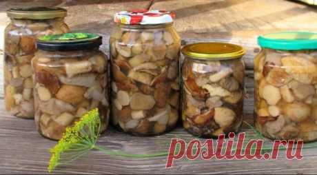 Универсальный маринад для всех грибов (на зиму) | Идеи рецептов | Яндекс Дзен