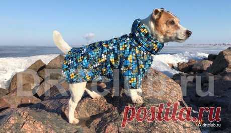 Демисезонная куртка для собаки своими руками Демисезонная куртка для собаки своими руками: выкройка куртки для собаки, всеь расход материалов и подробный видео мастер-класс.