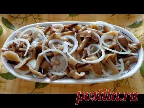 Солим грибы опята по бабушкиному рецепту. Пальчики оближешь. Грибной сезон
