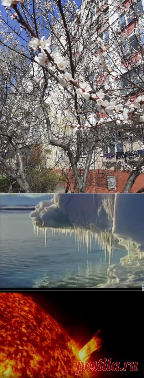 Глобальное потепление достигло пика. Далее следует похолодание | путешествуем онлайн | Яндекс Дзен
