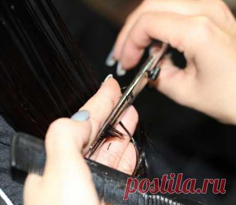 Лунный календарь стрижки волос наянварь 2021 года - EAOMedia Стричь волосы лучше всего вдни, наполненные благоприятной энергетикой, ивпервом месяце 2021 года ихбудет предостаточно. Рекомендации астрологов помогут выбрать оптимальное время для смены прически, которая вернет уверенность ипоможет привлечь удачу.