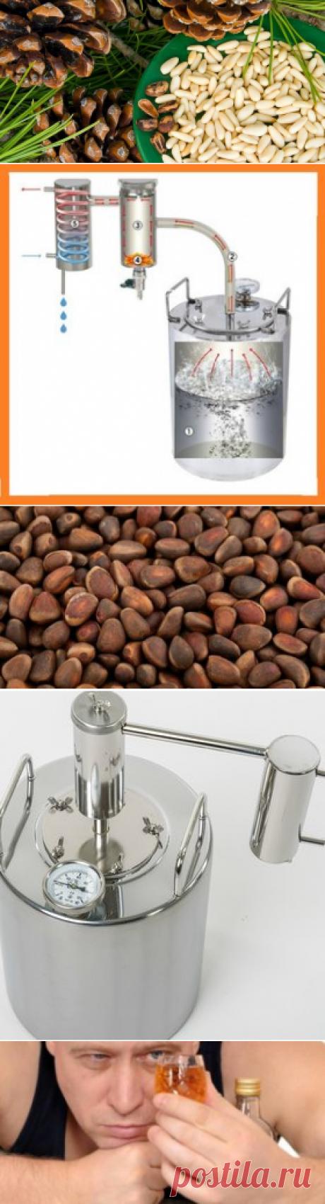 Кедровые орехи и ореховая настойка на водке: польза и вред