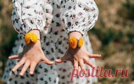 Травы, которые помогут держать гормоны под контролем | СПЕЦИЯ | Яндекс Дзен