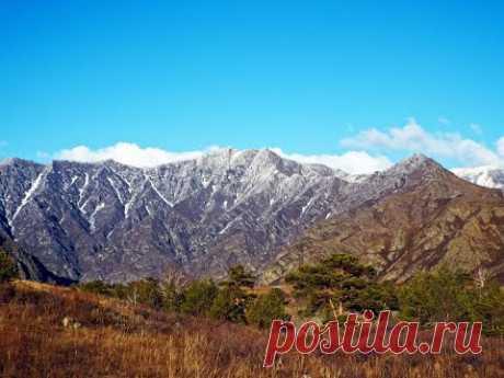 Красивые горы Алтая у реки Катунь - YouTube