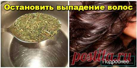 Остановить выпадение волос - ПОЛЕЗНЫЕ СОВЕТЫ