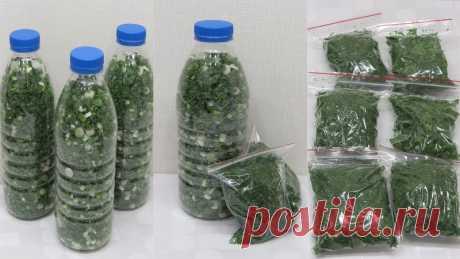 Можно ли замораживать лук: репчатый лук в морозилке, как заморозить очищенный в домашних условиях, нарезанный репчатый и зеленый, отзывы, мороженный на хранение Как правильно хранить лук зимой и можно ли его замораживать. Заморозка репчатого, зеленого лука и порея. Как подготовить продукт. Способы заморозки.