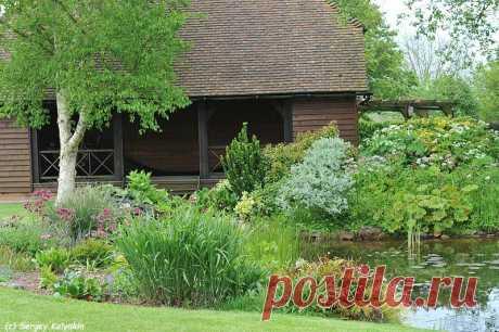 И еще 5 идей для коттеджного сада | Сады и цветы | Яндекс Дзен