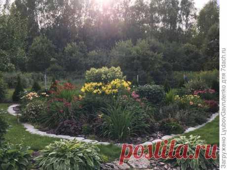 Клумбы непрерывного цветения: особенности, правила создания и подбор растений