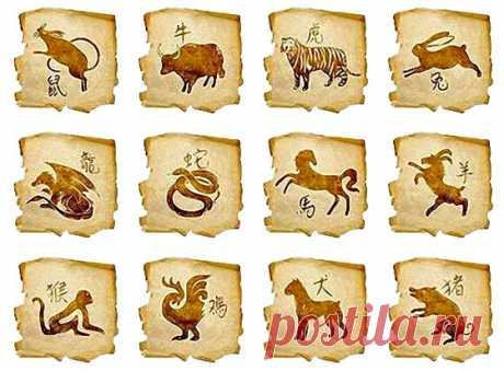 Восточный гороскоп: Добрые гримасы Огненной Обезьяны