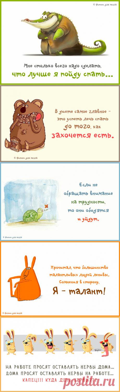 Подборка веселых карточек с фразами. ФОТО | CARRYOSITY | Яндекс Дзен