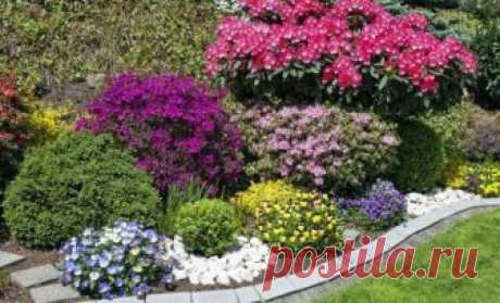 Beds of continuous blossoming – the scheme with the description of flowers | Flower beds and beds (Огород.ru)