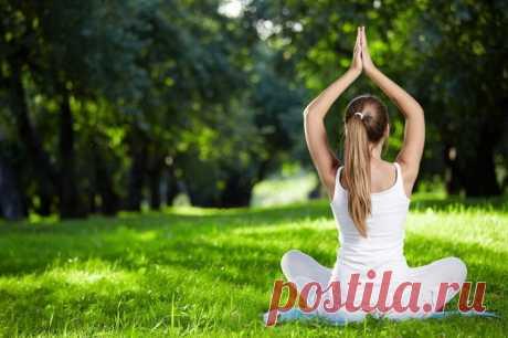 Уроки хатха-йоги для начинающих — 10+ особенных асан