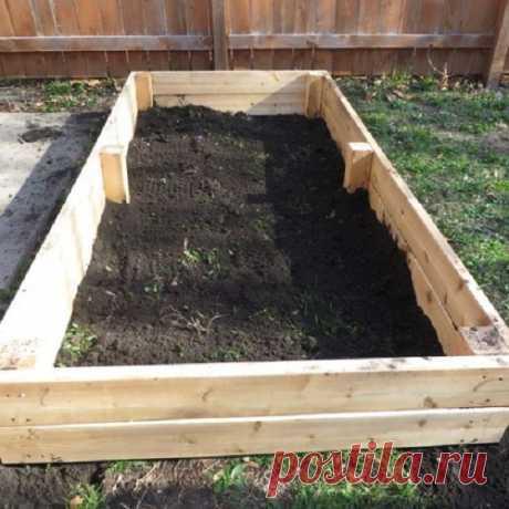 Архивы Строительство теплицы - Страница 2 из 3 - Теплица + сад и огород своими руками: мы знаем об урожае все