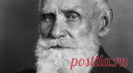 Раздельное питание по принципу академика Павлова, за которое он получил Нобелевскую премию | Всегда в форме!