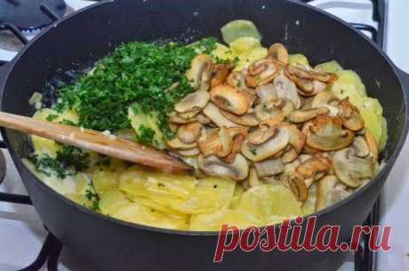 Как приготовить картошка с грибами в сметане - рецепт, ингредиенты и фотографии