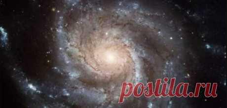 В центре Млечного Пути найдены остатки чужой галактики - Славянская доктрина - медиаплатформа МирТесен https://alter-science В центре Млечного Пути найдены остатки чужой галактики Как поагают астрономы, в центре Млечного Пути находится сверхмассивная черная дыра более чем в четыре миллиона раз тяжелее Солнца. Ее окружает чрезвычайно плотное Казвездное скопление, содержащее десятки миллионов звезд
