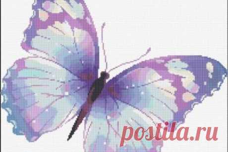 Схемы вышивки бабочек Бабочка была и остается одним из самых популярных мотивов среди вышивальщиц всего мира. Быстро увядающая красота, невероятная лёгкость, романтика и нежность раз и навсегда покоряют любого, поэтому вышить бабочку крестом всегда приятно.