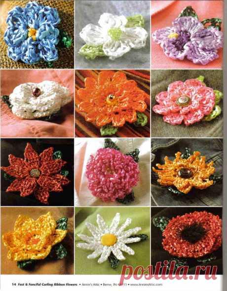 Много цветочков красивых и разных