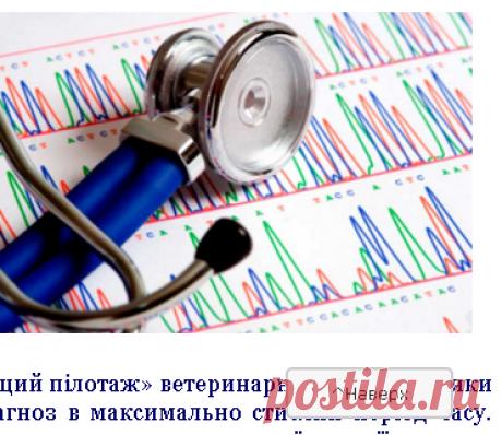 """Диференційна діагностика - Консультаційний центр з ветеринарної кардіології"""""""