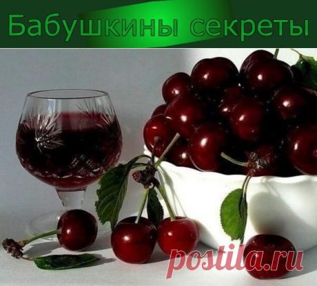 Готовим домашнее вино из вишни. 4 напитка, чтобы радовать родных изысканным вкусом всю зиму