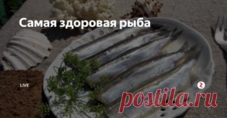 Самая здоровая рыба Все мы наслышаны о том, как полезна семга, форель, лосось. Но заметим, что только выросшая на воле, а не та, что выращивается в специальных бассейнах и питается комбикормом. Эксперты утверждают, что у данных элитных сортов есть серьезный конкурент среди бюджетных и доступных видов рыбы, который тоже является хорошим источником омега-3 жирных кислот. Название этой гордой рыбы — мойва. Рыба мойва зн