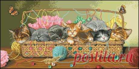 Котята в корзине - Кошки - Фауна - СХЕМЫ - ВЫШИВКА КРЕСТОМ