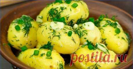 Меня обманули! Картофель был приготовлен... на луковой шелухе! | МАГУСТО | Яндекс Дзен
