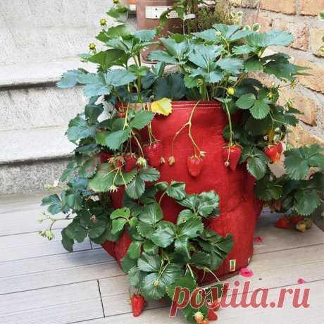 Картофельная сеялка с несколькими карманами Сумка Травы с овощами на балконе Сад На открытом воздухе