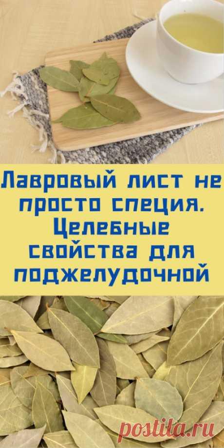 Лавровый лист не просто специя. Целебные свойства для поджелудочной. - likemi.ru
