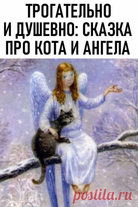 Трогательно и душевно: сказка про кота и ангела