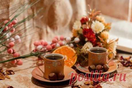 Краски осени с оттенком кофе