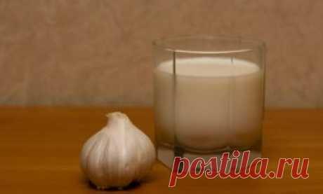 Чеснок с молоком – рецепт эликсира молодости: В небольшую кастрюлю наливаем 1 стакан молока и ставим ее на огонь. Пока молоко закипает, возьмем 2 зубчика чеснока и очень мелко их измельчим.  Как только молоко закипит, добавляем в него чеснок, снимаем с огня и накрываем крышкой.  Через 10 минут наш эликсир молодости готов.  Эликсир из чеснока с молоком рекомендуется употреблять 1 раз в неделю, по 1 стакану за раз.