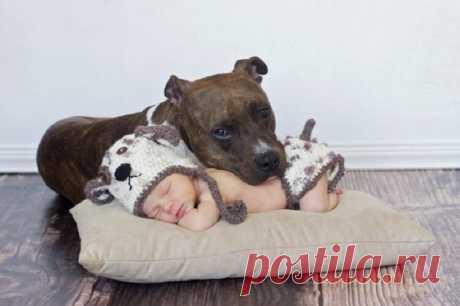Умилительные фото детей с животными / Малютка