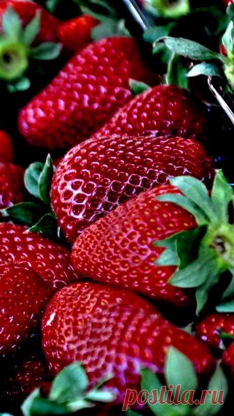 клубника, ягоды,