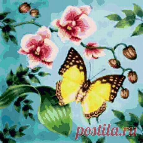 Предпросмотр - Схема вышивки «Бабочка и орхидея» - Автор «13197» - Авторы - Вышивка крестом
